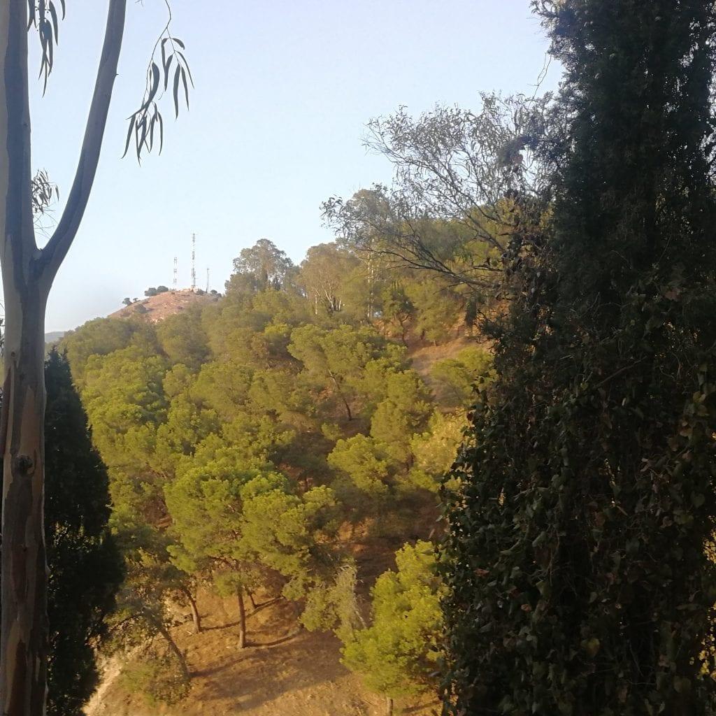 Estrenando zapas de trail